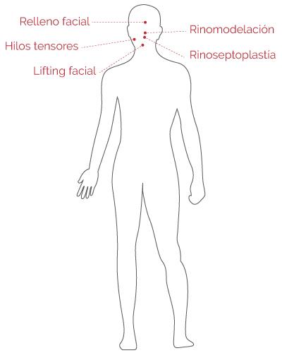 Cuerpo Humano 3