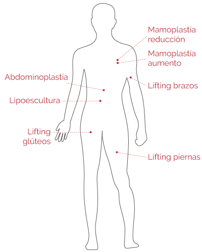 Cuerpo Humano 2